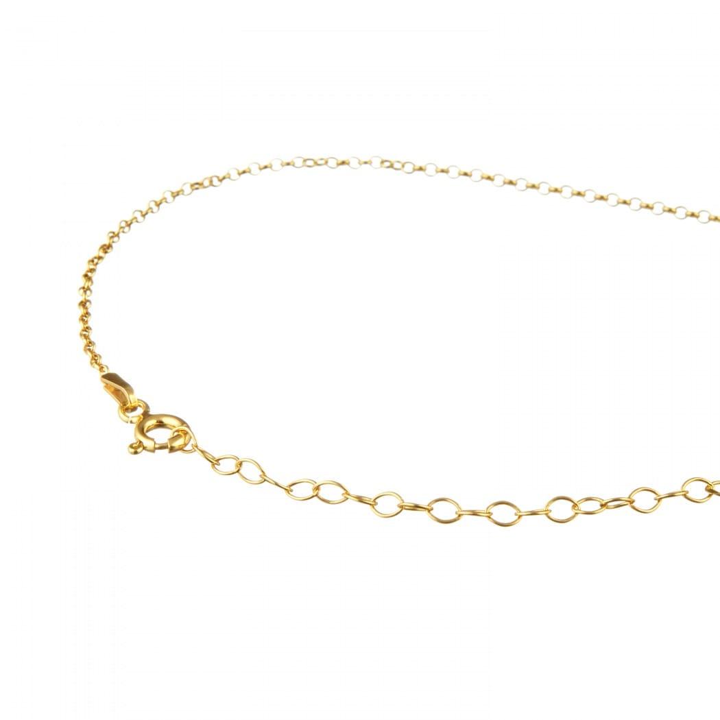 Colar Capricórnio em Prata Dourada