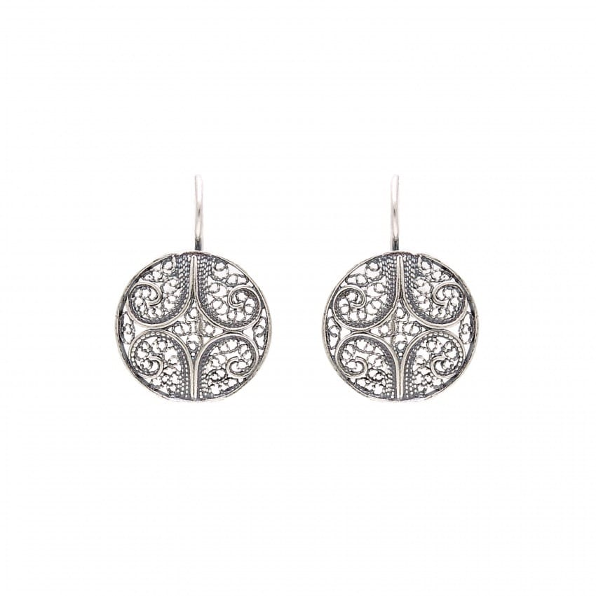 Earrings Circles in Silver