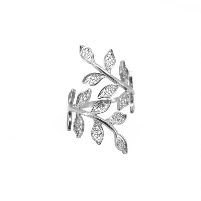 Ring Ciclo in Silver